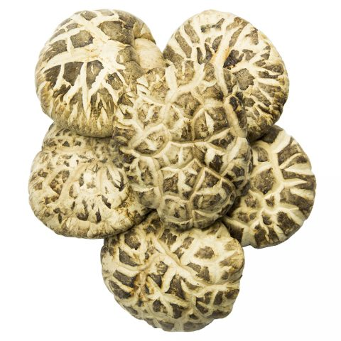 Shiitake Mushroom, Flower Top, Dried